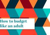 Budget_like_Adult_700x456