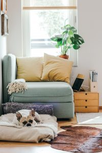 Home Improvements - Small changes that make a big difference