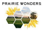 2022 Calendar Contest - Prairie Wonders